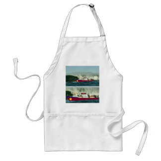 From SEA Shore during HIGH TIDE Apron