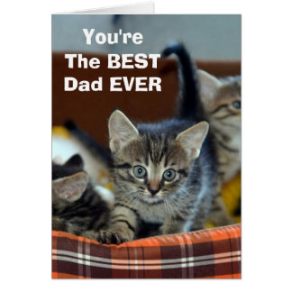 From The Cat BEST Dad Greeting Card
