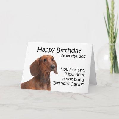 Funny Dachshund Birthday Card From The Gang Zazzle