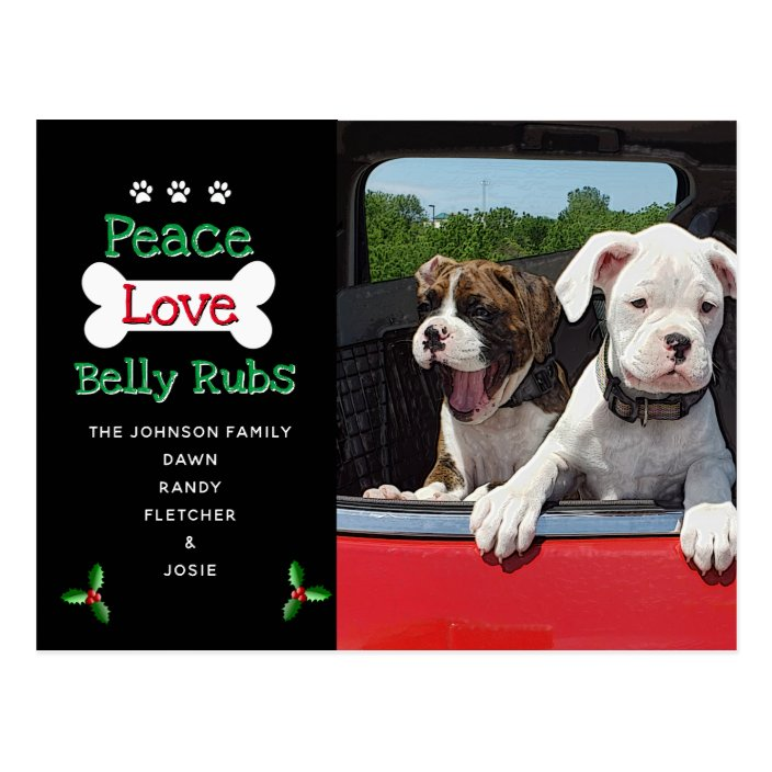 From The Dog Christmas Cards Zazzle
