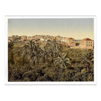 From the garden, Jaffa, Holy Land, (i.e. Israel) c Postcard