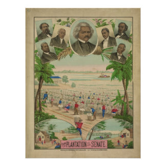From the Plantation to the Senate by G. Watson Poster