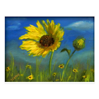 froml hand painted wild oklahoma flower postcard