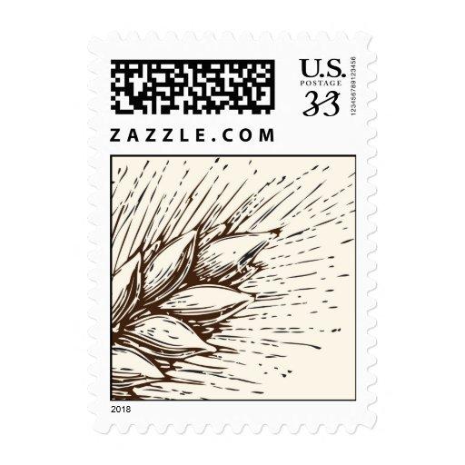 Fronda del trigo envio