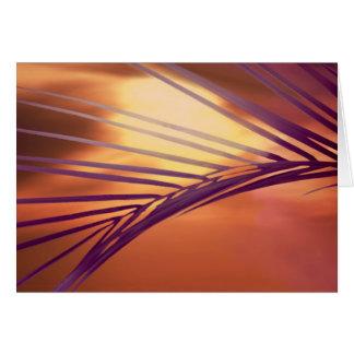 Fronda en la puesta del sol tarjeta de felicitación