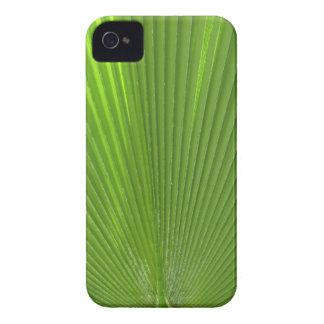 Fronda naturalmente fresca de la palma de Surfaces iPhone 4 Case-Mate Cárcasas
