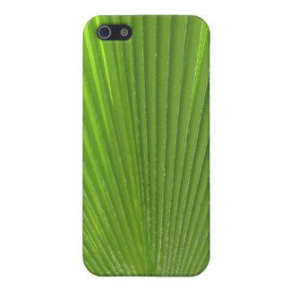 Fronda naturalmente fresca de la palma de Surfaces iPhone 5 Carcasa