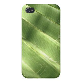 Fronda naturalmente fresca de Surfaces_Fluted iPhone 4 Protector