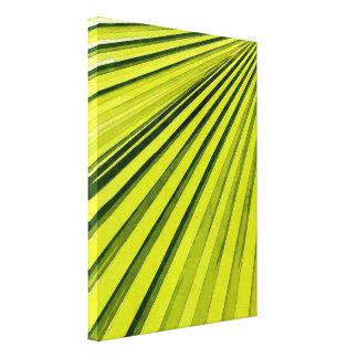 Fronda verde de la palma impresiones en lona estiradas