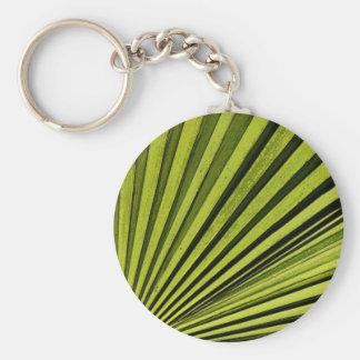 Fronda verde de la palma llavero