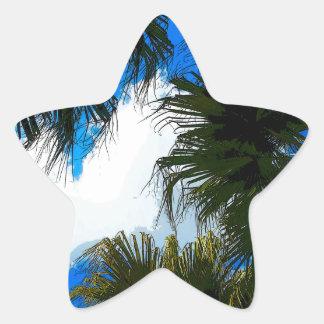 Frondas de la palma pegatina en forma de estrella
