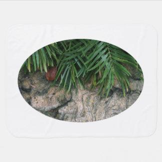 Frondas de la palma sobre la foto aseada del jardí mantas de bebé