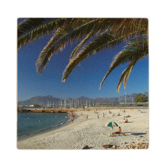 Frondas de la palma sobre la playa en la bahía de