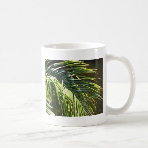 Frondas de la palmera taza