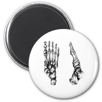 Front and side view of bones of the feet 2 inch round magnet