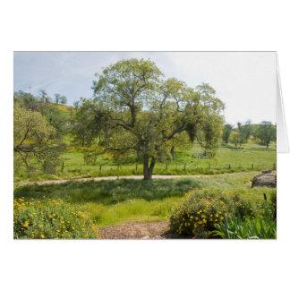 Front Porch Vista Oak Card