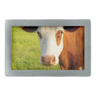 Front view Friesian cow Rectangular Belt Buckle