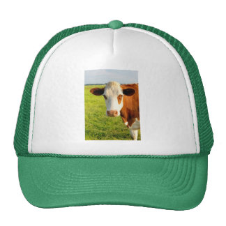 Front view Friesian cow Trucker Hat