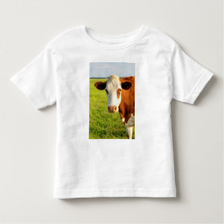 Front view Friesian cow Shirts