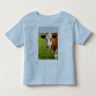 Front view Friesian cow T-shirts
