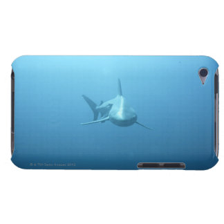 Front view of a Tiger Shark Barely There iPod Cover