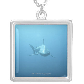 Front view of a Tiger Shark Silver Plated Necklace