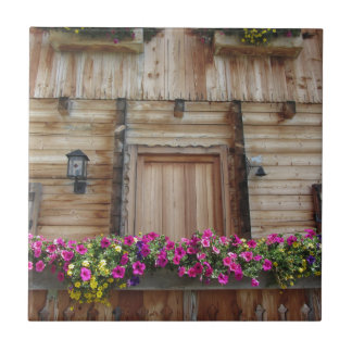 Front view of a wooden mountain cabin ceramic tile