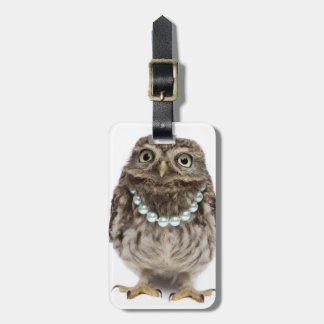 Front view of a Young Little Owl Bag Tag