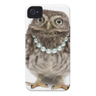 Front view of a Young Little Owl iPhone 4 Case