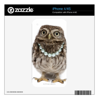 Front view of a Young Little Owl iPhone 4S Skins