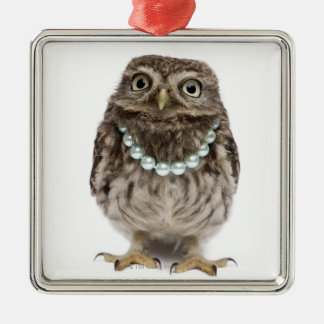 Front view of a Young Little Owl Metal Ornament