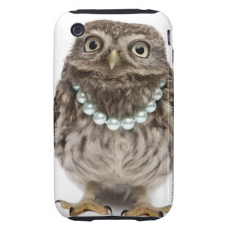 Front view of a Young Little Owl wearing a iPhone 3 Tough Covers