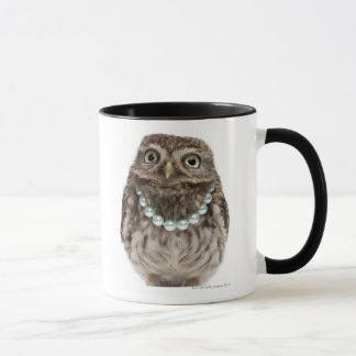 Front view of a Young Little Owl wearing a Mug