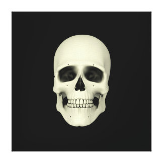 Front View Of Human Skull Canvas Print