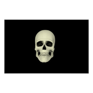 Front View Of Human Skull Poster