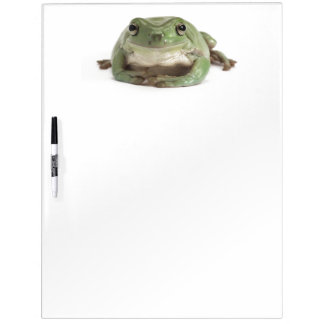 Front View Studio shot of a Smiling, Whites Tree Dry Erase Board