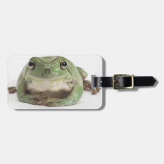 Front View Studio shot of a Smiling, Whites Tree Luggage Tag