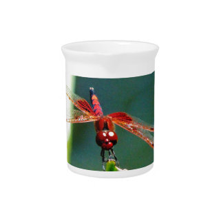 Frontal Red and Black Dragonfly Drink Pitchers