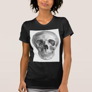 Frontal view drawing of a human skull shirt