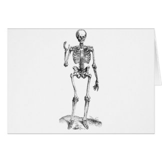 Frontal vintage drawing of a waving skeleton card