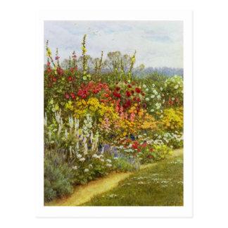 Frontera de la hierba y de la flor postales
