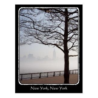 Frontera de las ramas de árbol de la silueta del tarjeta postal