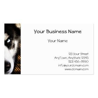 Frontera fornida del ojo azul del perro tarjetas de visita