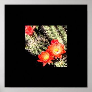 Frontera negra floreciente del cactus impresiones