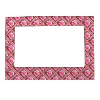 Fronteras color de rosa de la flor marcos magneticos