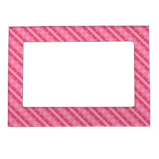Fronteras color de rosa rosadas del modelo foto de imanes