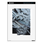 Frost 2 iPad 3 decals