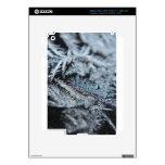 Frost 2 iPad 3 skin
