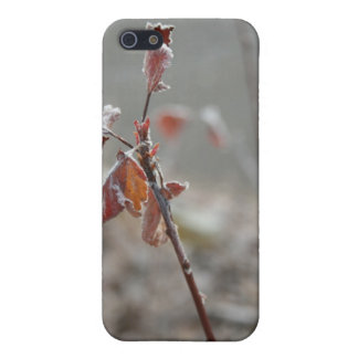 Frost and Leaf iPhone SE/5/5s Case
