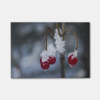 Frost Berries Post-it Notes